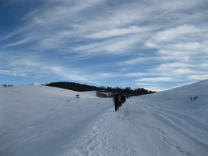 winternordic6
