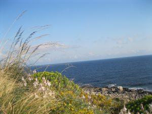 Sicilia 2011 124