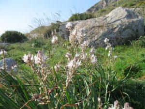 Sicilia 2011 136